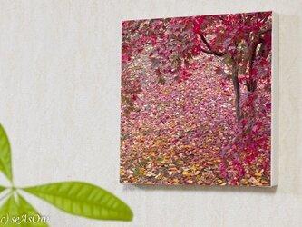 ファブボ「紅葉」(L)の画像