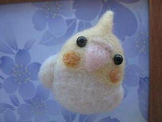 羊毛フェルト オカメインコ マグネットの画像