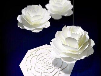 咲くようにひらく 花のメッセージカード〈ローズ〉 forバースデー・ウェディング・アニバーサリーの画像