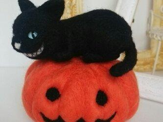 50%off!羊毛♪黒猫♪パンプキンの画像