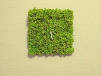 北欧ツンドラモス時計の画像