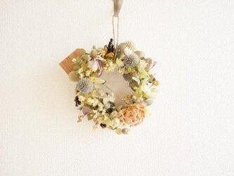 オレガノ ルリ玉アザミ 芍薬 wreathの画像