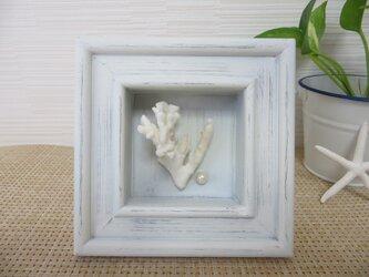 サンゴとパールのフレームの画像