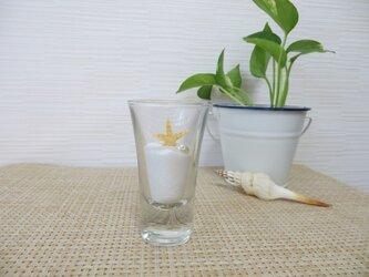 ガラスの中のミニヒトデとサンゴ砂の画像