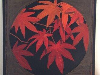 チョークアート 紅葉の画像