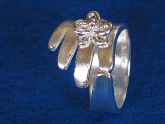 銀の手の画像