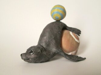 貝がら ミニチュア オットセイの画像