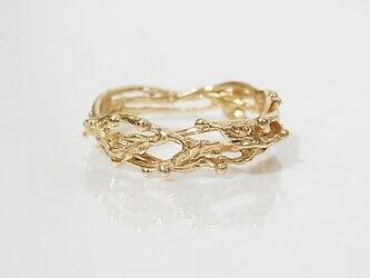 栄光の王冠リング(gold)の画像