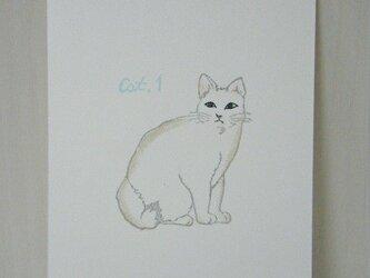 葉書〈cat①-2〉の画像