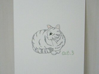 葉書〈cat③-3〉の画像