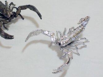 Miniオブジェ「蠍」(925銀)の画像