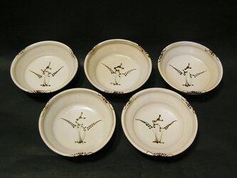 絵粉引銘々皿5枚組(水引)の画像