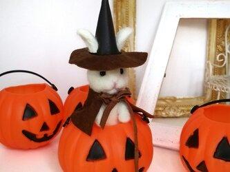 羊毛♪ウサギ魔女の画像