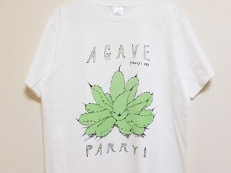 agave parryi t-shirtsの画像