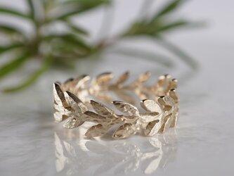 Olive leaf ring [R066K10]の画像