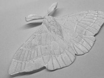moth pendantの画像