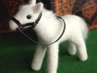 羊毛フェルト 白馬の画像