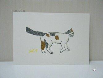 葉書〈cat⑨-1〉の画像
