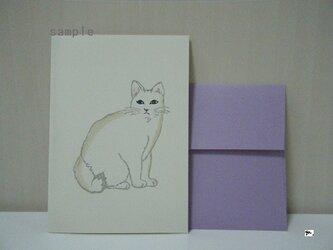ミニカードセット〈cat①-2〉の画像
