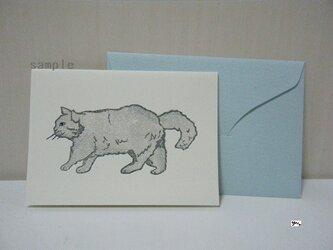 ミニカードセット〈cat④-2〉の画像