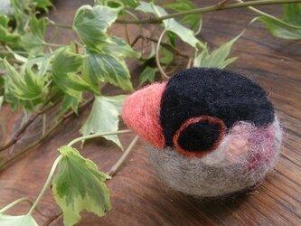 羊毛フェルト とりだるま 桜文鳥の画像