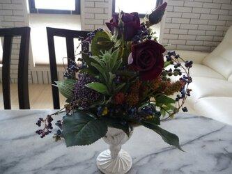 赤バラと紫のつるの画像