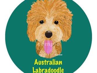 オーストラリアン・ラブラドゥードゥル《5色/犬種名ステッカー》の画像