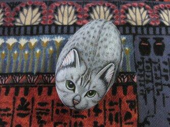 石猫 「輝きは白銀のごとく・・・」の画像