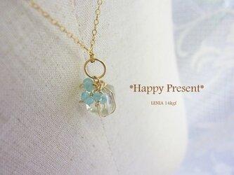 Happy Present 14kgfの画像