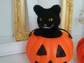 50%off!羊毛♪にんまり黒猫の画像