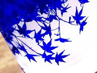 紅葉グラス【青藍】の画像