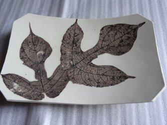桑の葉文 角皿の画像