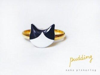 猫ピンキーリング(ハチワレ)の画像