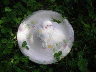 (新作)てのりとり cloverちゃんの画像