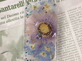 iPhone5.5s CUTE pressedflowerの画像