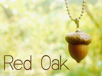 たいへん立派なレッドオークのペンダントXLの画像