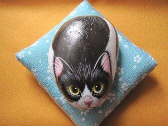 石猫 「オールドファッション」の画像