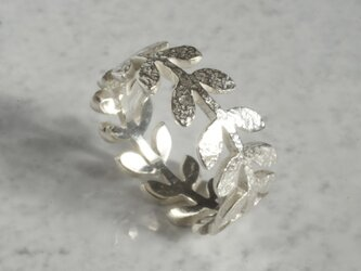 Laurel leaf ring {R004SV}の画像