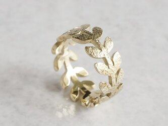 Laurel leaf ring [R004K10]の画像
