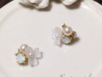 white flower pierceの画像