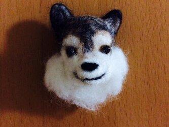 オオカミ!の画像