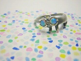 虹眼鏡をかけたステネコくんの画像