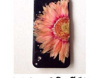 iPhone5/6押し花ケースの画像