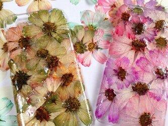 iPhone6 GREEN&PINK 押し花の画像