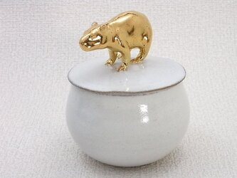 Gold Capybara Candy Box-Aの画像