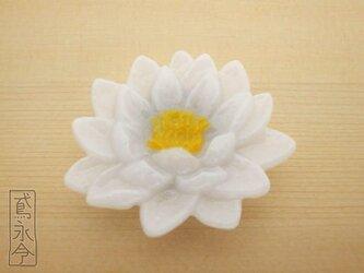 帯留 白色睡蓮の画像