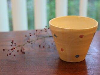 色化粧ドットフリーカップ2の画像