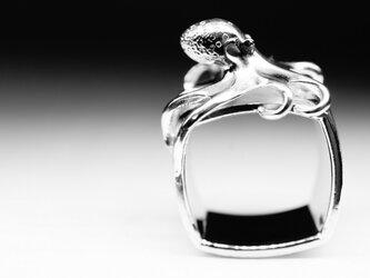 octopus ringの画像