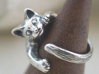 猫リング ピクシーの画像