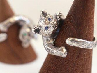 猫リング ピクシー(クリクリ瞳バージョン)の画像
